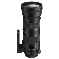 SIGMA 150-600mm f/5-6.3 DG OS HSM (S) SPORTS CANON